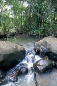 Rivière Bêtes Rouges - Martinique - Rivière-Salée - © photo Pierre Courtinard