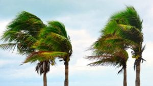 Cyclone - préparation - Martinique